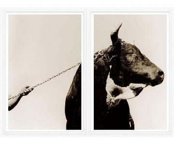 Trowbridge Gallery - Bull & Arm