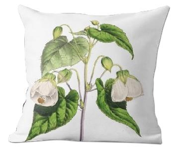 Flora and Fauna - Abutilion The Floral Magazine Pillow