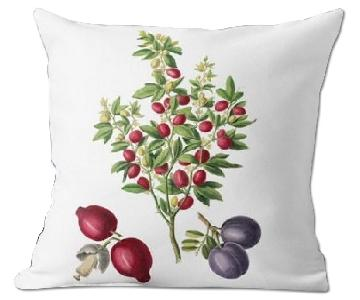 Flora and Fauna Citrus Trifoliata Pillow