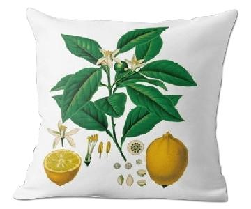 Flora and Fauna Vintage Lemons Pillow