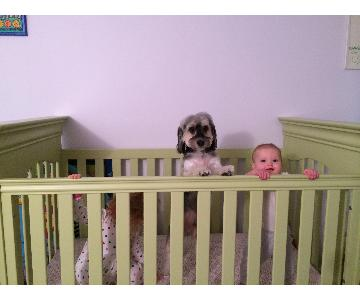 Young America Seagrass Green Crib