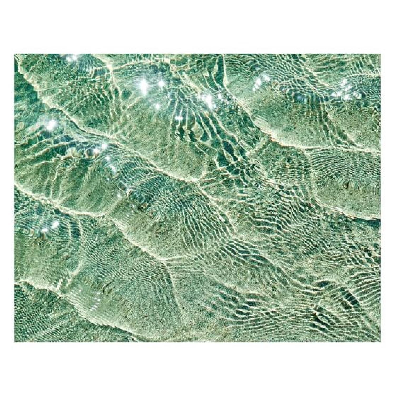 Pottery Barn Glimmer Framed Print By Lupen Grainne - image-3