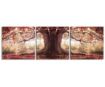 Elementem Photography - Oak Tree in Autumn