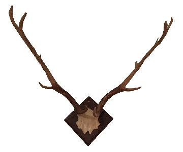 One King's Lane Resin Antlers Set of 4