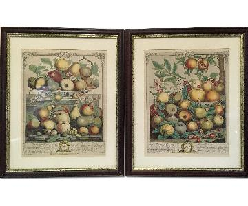 Framed Reproduction - 1732 R Furber Fruit Prints H. Fletcher