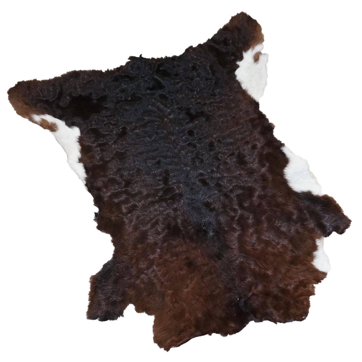 Fluffy Dark Brown with White Calfhide Rug - image-0