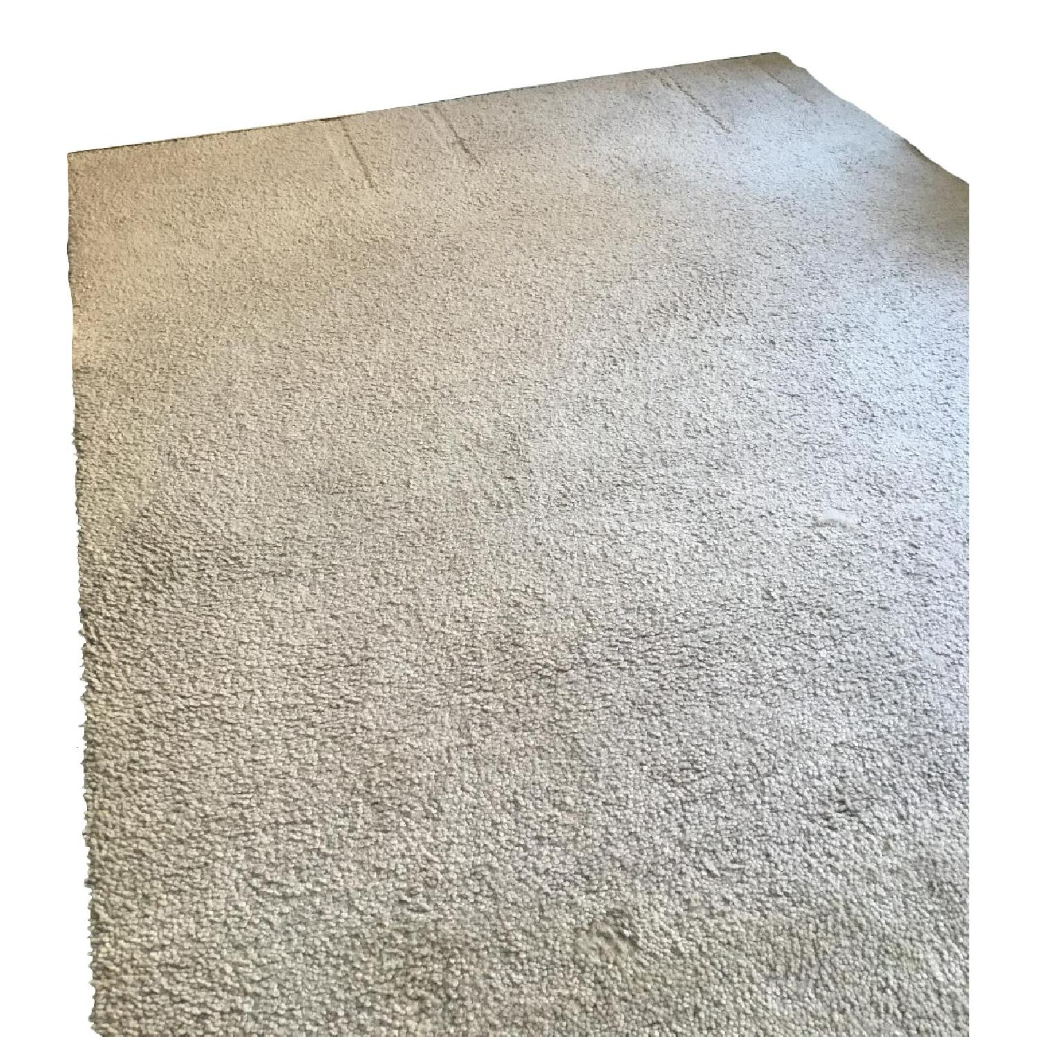 Crate & Barrel Felted Wool Area Rug