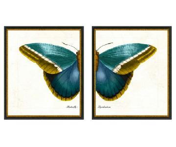 Butterfly Diptych II Prints
