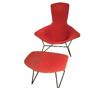 Design Within Reach Bertoia Bird Chair