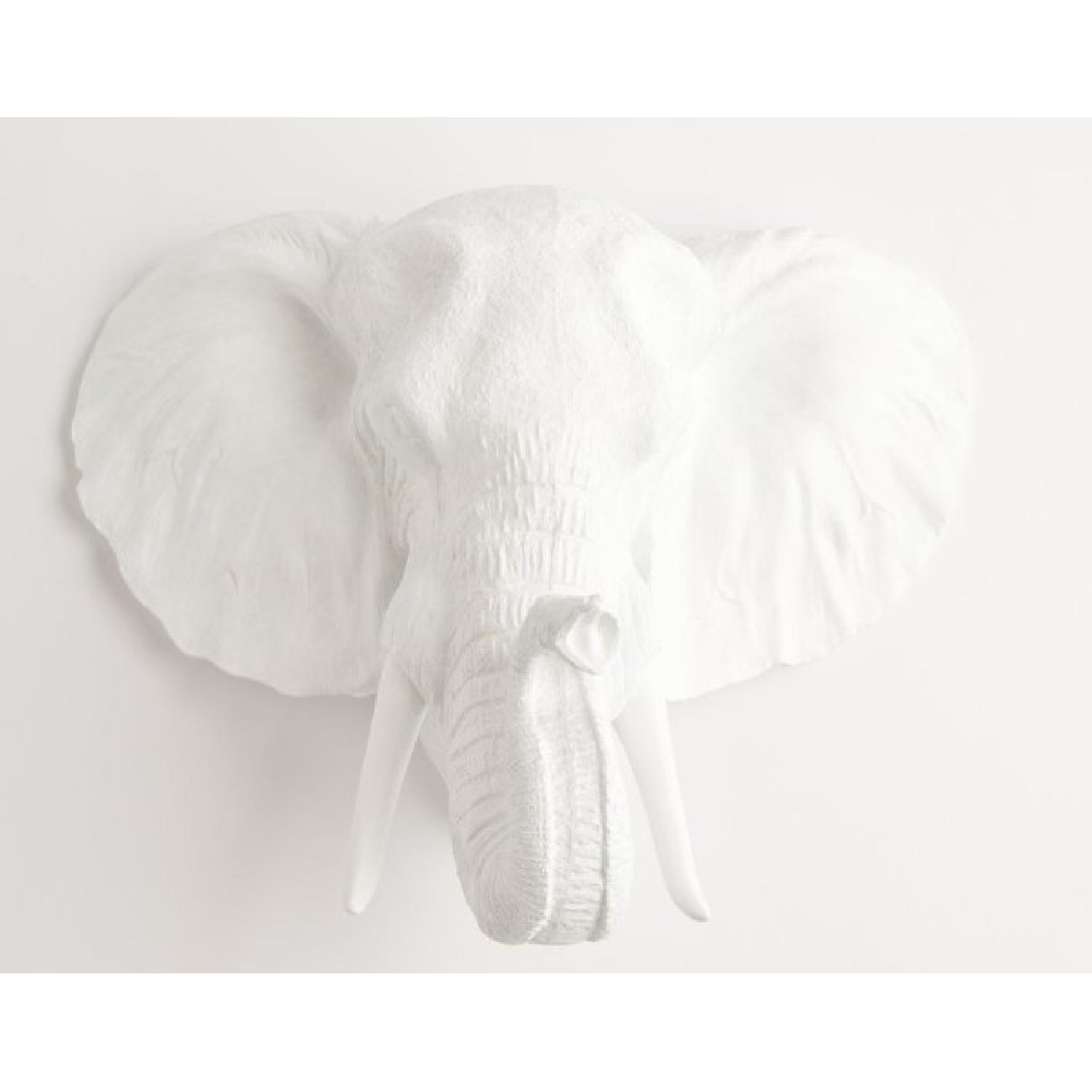Elephant Head Wall Mount The Tolsby In White Resin Aptdeco