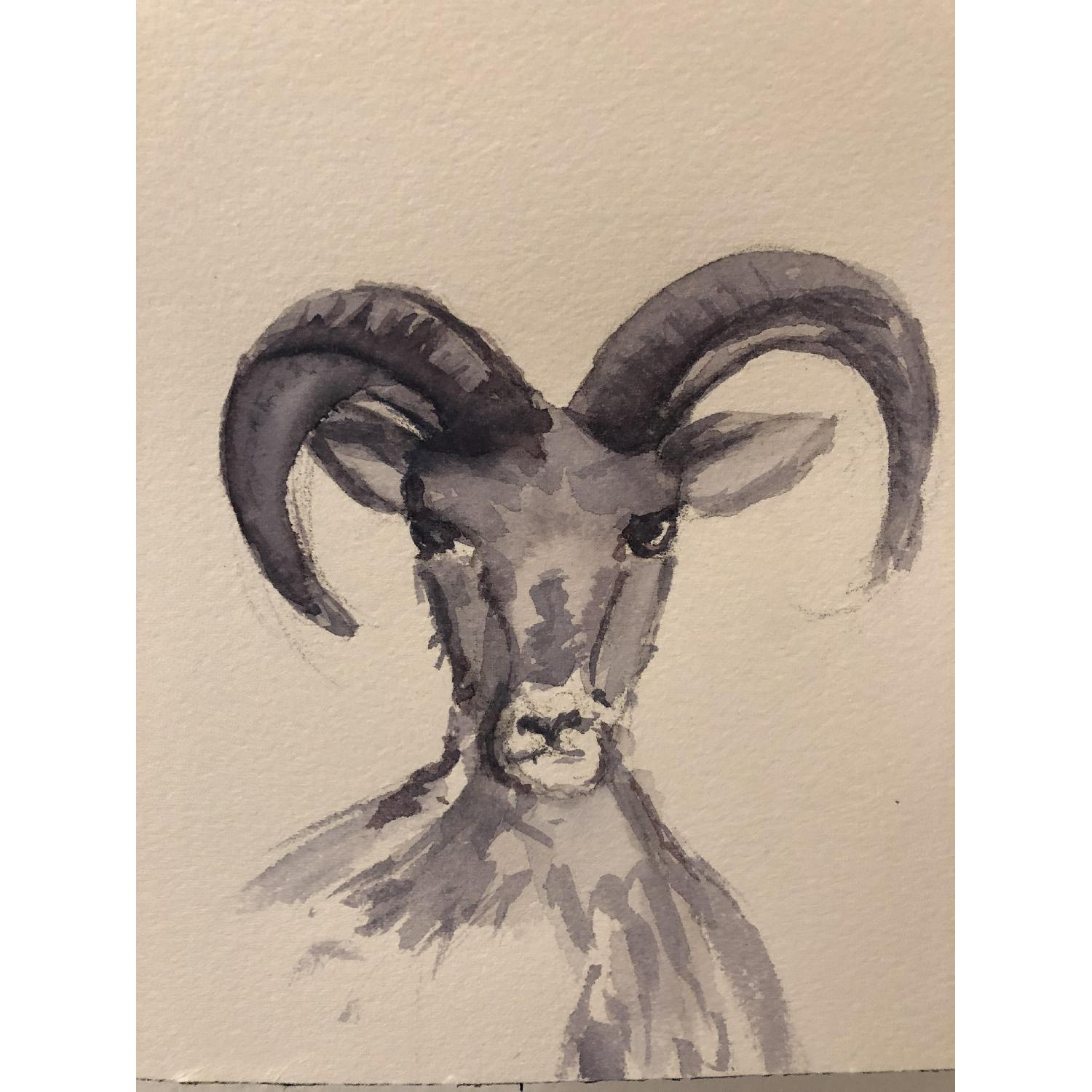 Mountain Goat Painting by Hand