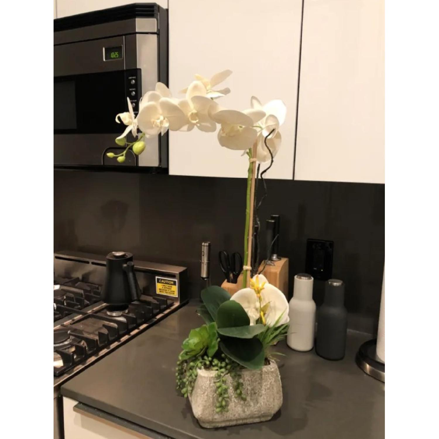 Phalaenopsis Silk Orchid w/ Succulents in Cement Planter-1