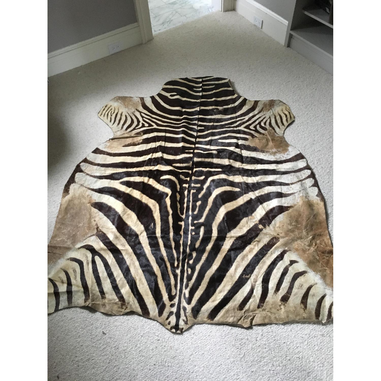 Zebra Hide Trophy Rug from Africa - image-1