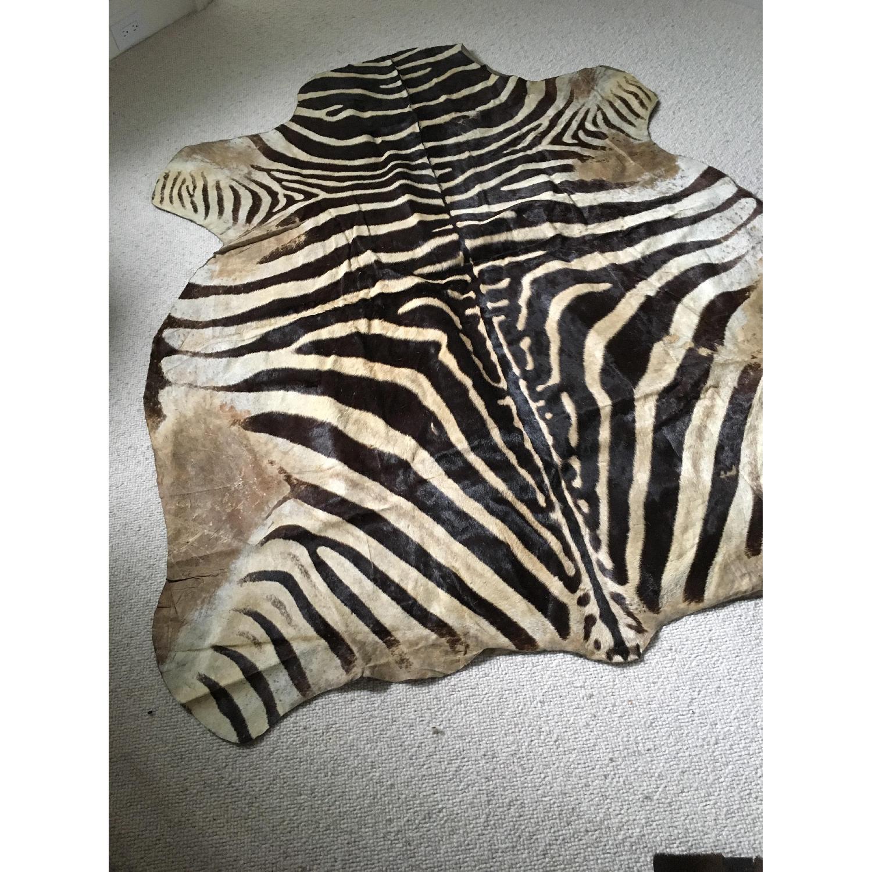 Zebra Hide Trophy Rug from Africa - image-2