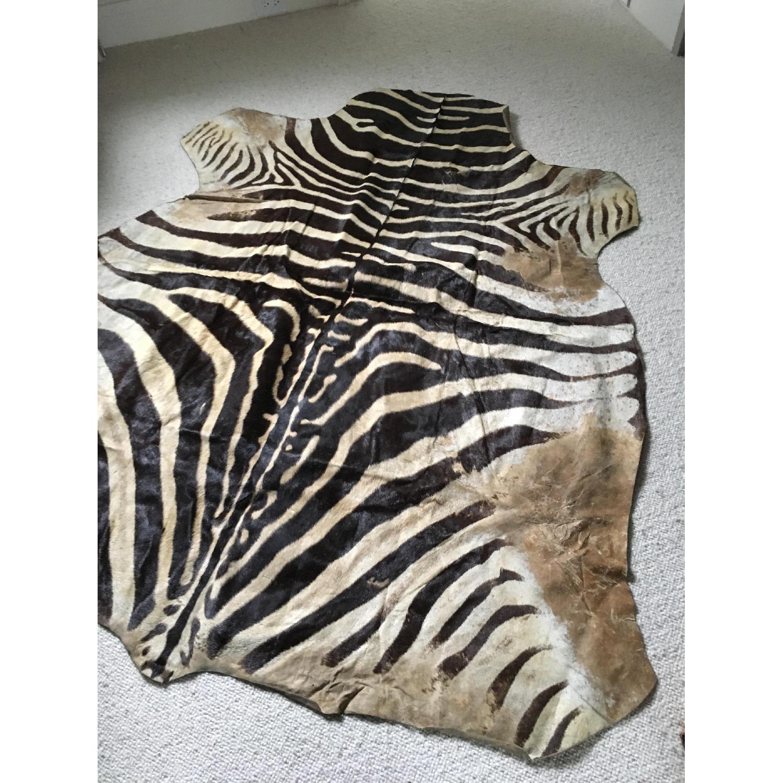 Zebra Hide Trophy Rug from Africa - image-3