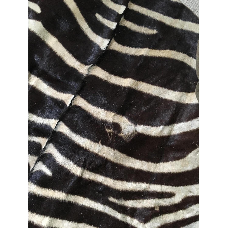 Zebra Hide Trophy Rug from Africa - image-6