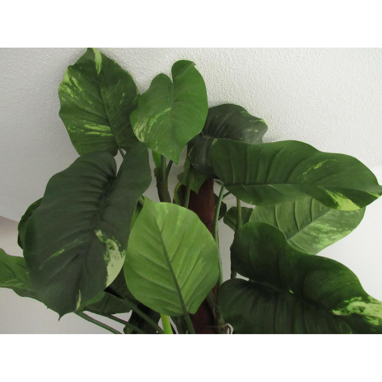 Giant Faux Devil's Ivy Potted Plant-4