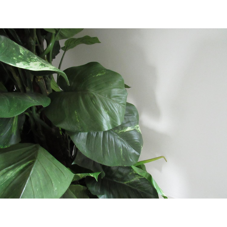 Giant Faux Devil's Ivy Potted Plant-5