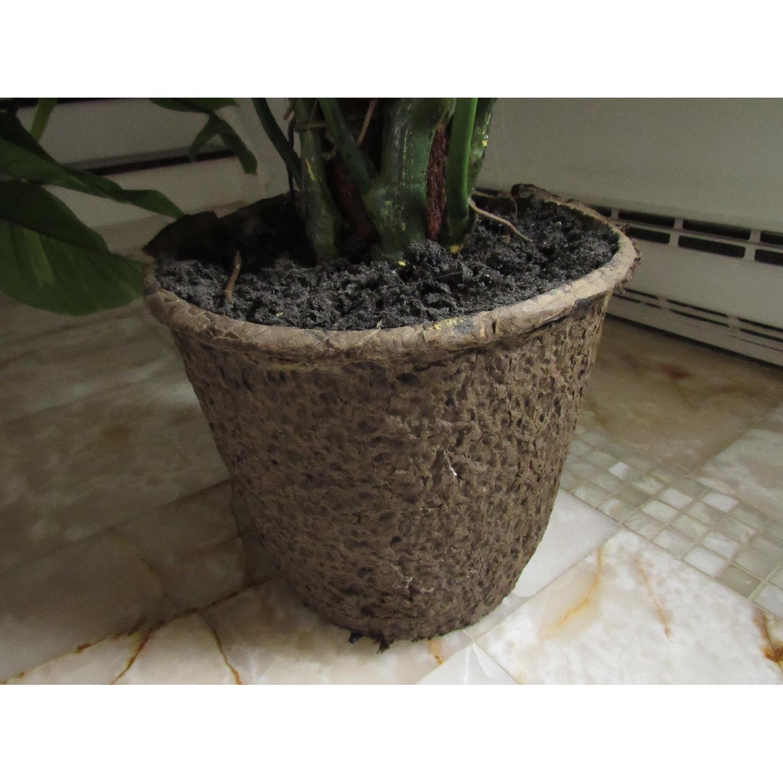 Giant Faux Devil's Ivy Potted Plant-7