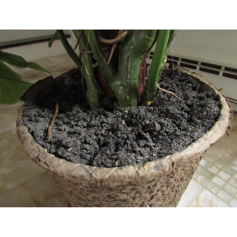 Giant Faux Devil's Ivy Potted Plant-8