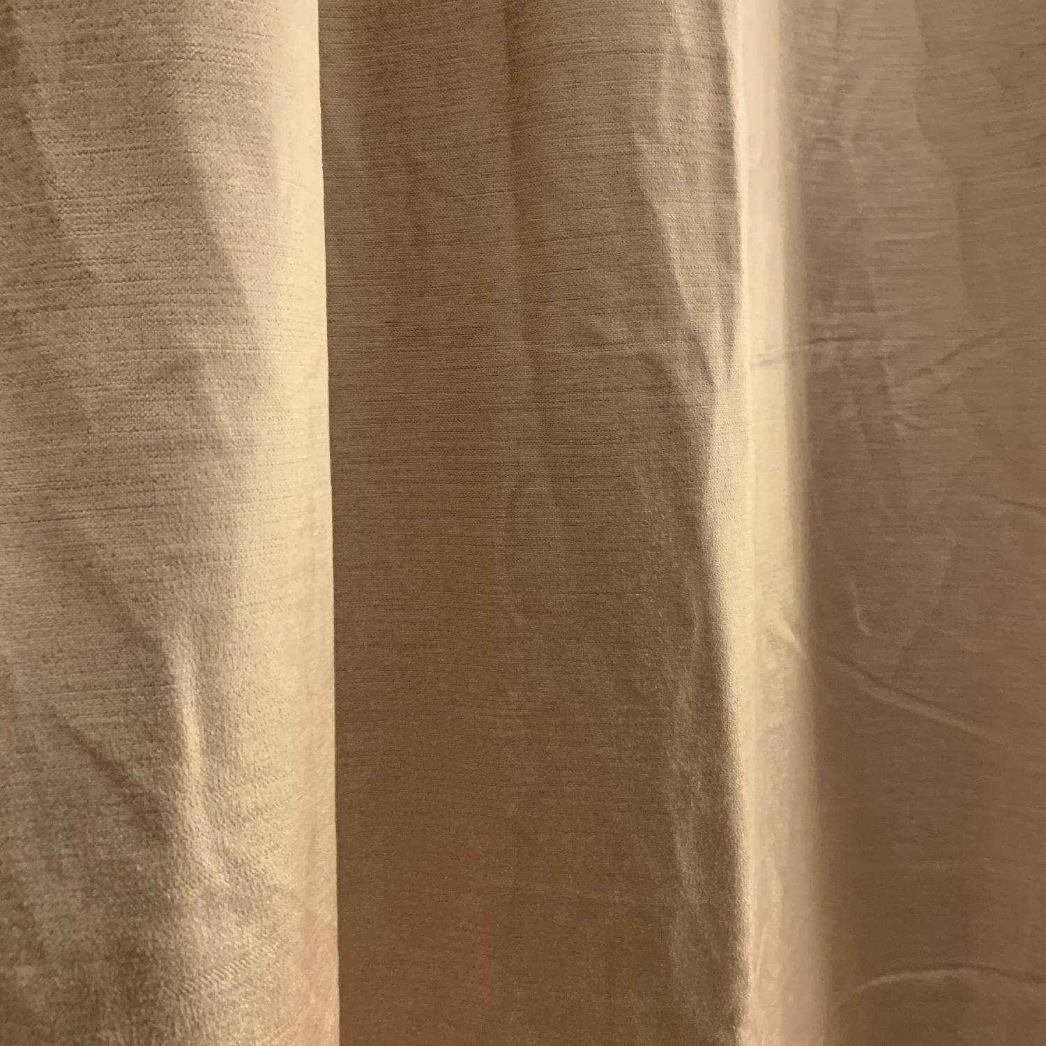 West Elm Cotton Luster Velvet Curtains in Dusty Blush-2