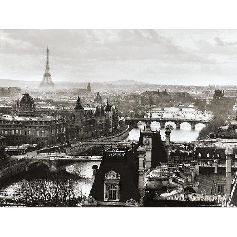 Z Gallerie Paris Eiffel Tower Seine Wood Mounted Print
