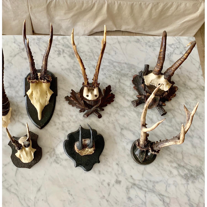 Resin Antlers-0