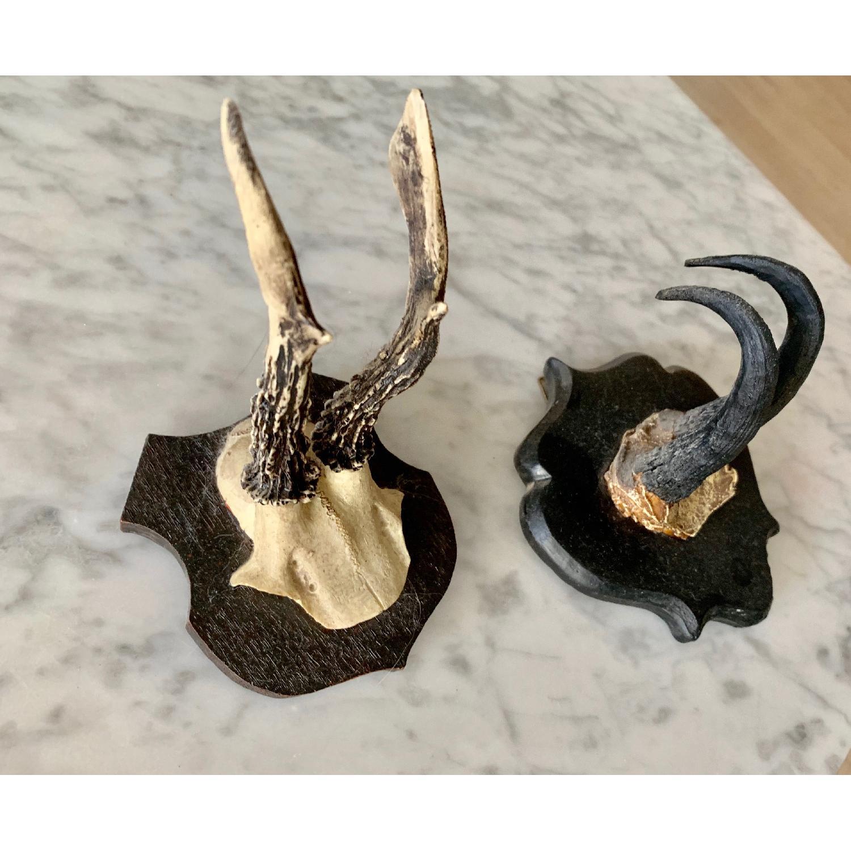 Resin Antlers-2