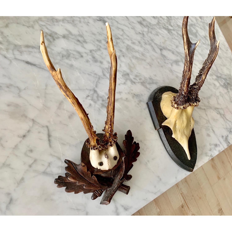 Resin Antlers-3