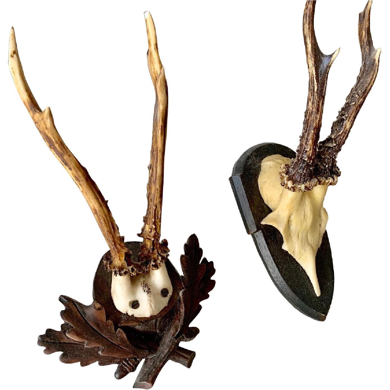 Resin Antlers