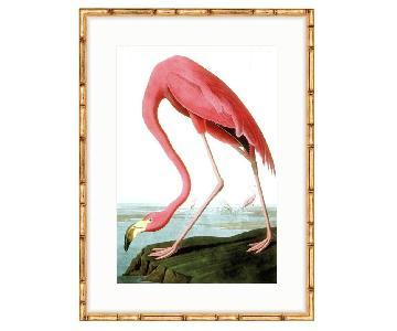 Framed Giclee Audubon Flamingo Print