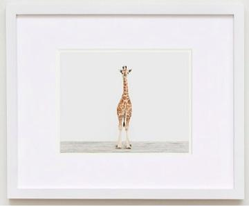 The Animal Print Shop Baby Giraffe No. 3