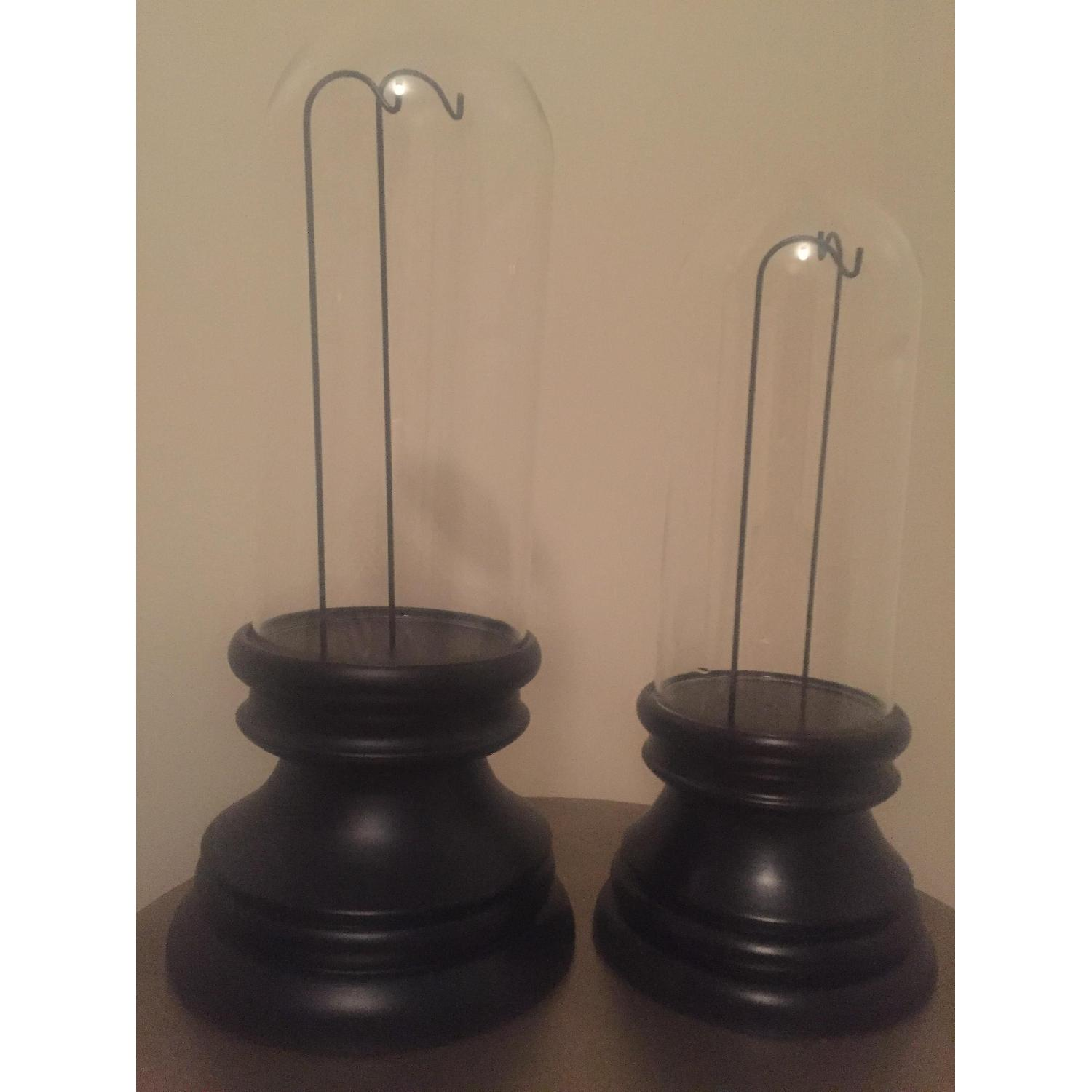Display Cloches - image-2