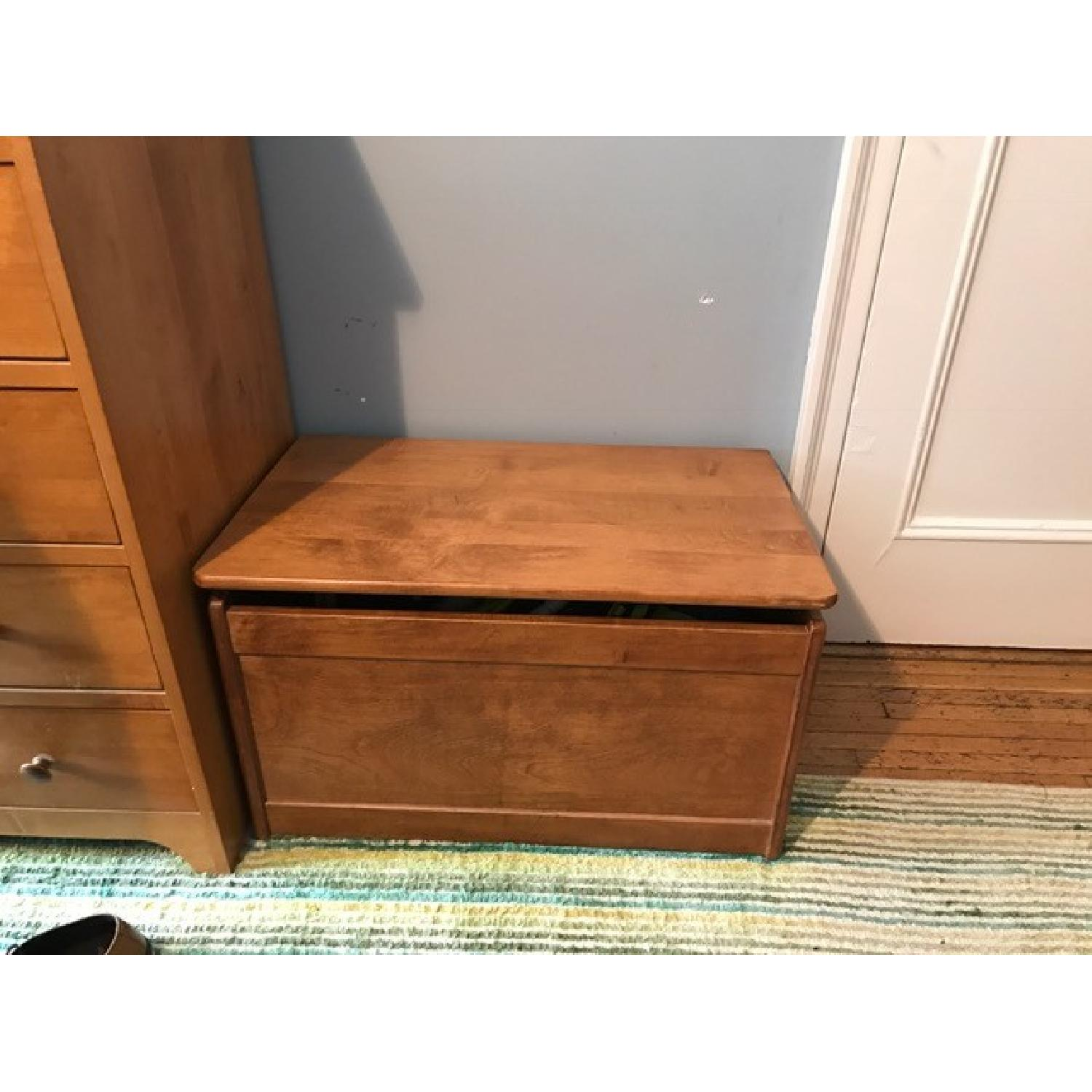 Toy Chest - image-1