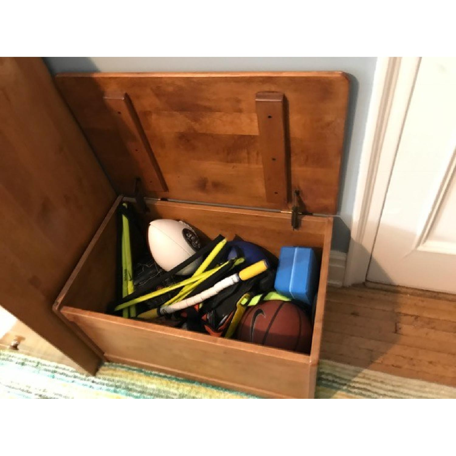 Toy Chest - image-3