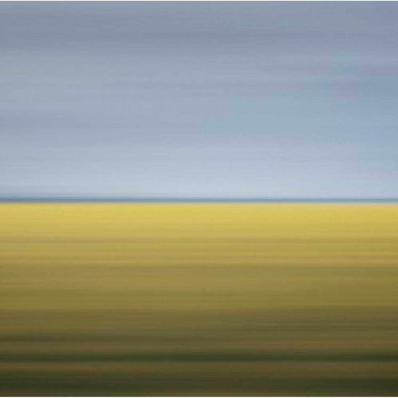 David Burdeny, Drift #11, Mustard Field, Carman, Canada