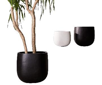 West Elm Stratus Large Planter