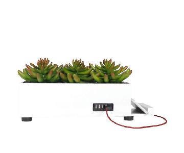 Brayden Studio Succulent Planter w/ USB Charger