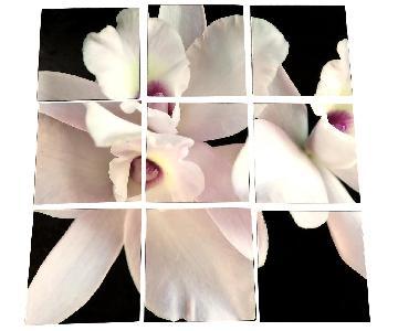 9-Piece Flower Wall Art