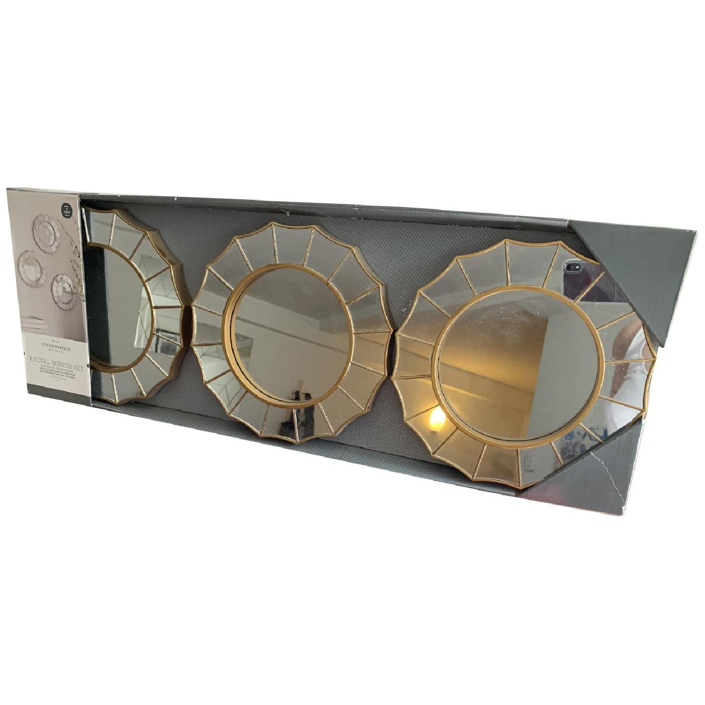 Target Threshold Radial Antique Look Mirror - image-0