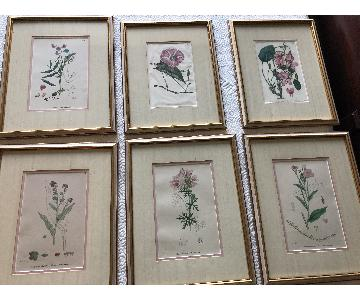 Vintage Early1800s Botanical Prints