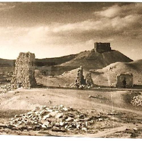 Used Palmyra Syria Art Photo Sepia Tone w/ Custom Frame for sale on AptDeco