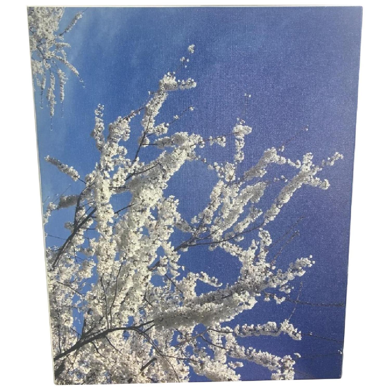 Japan Cherry Blossom Canvas Print