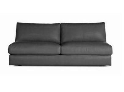 DWR Reid Leather Armless Sofa