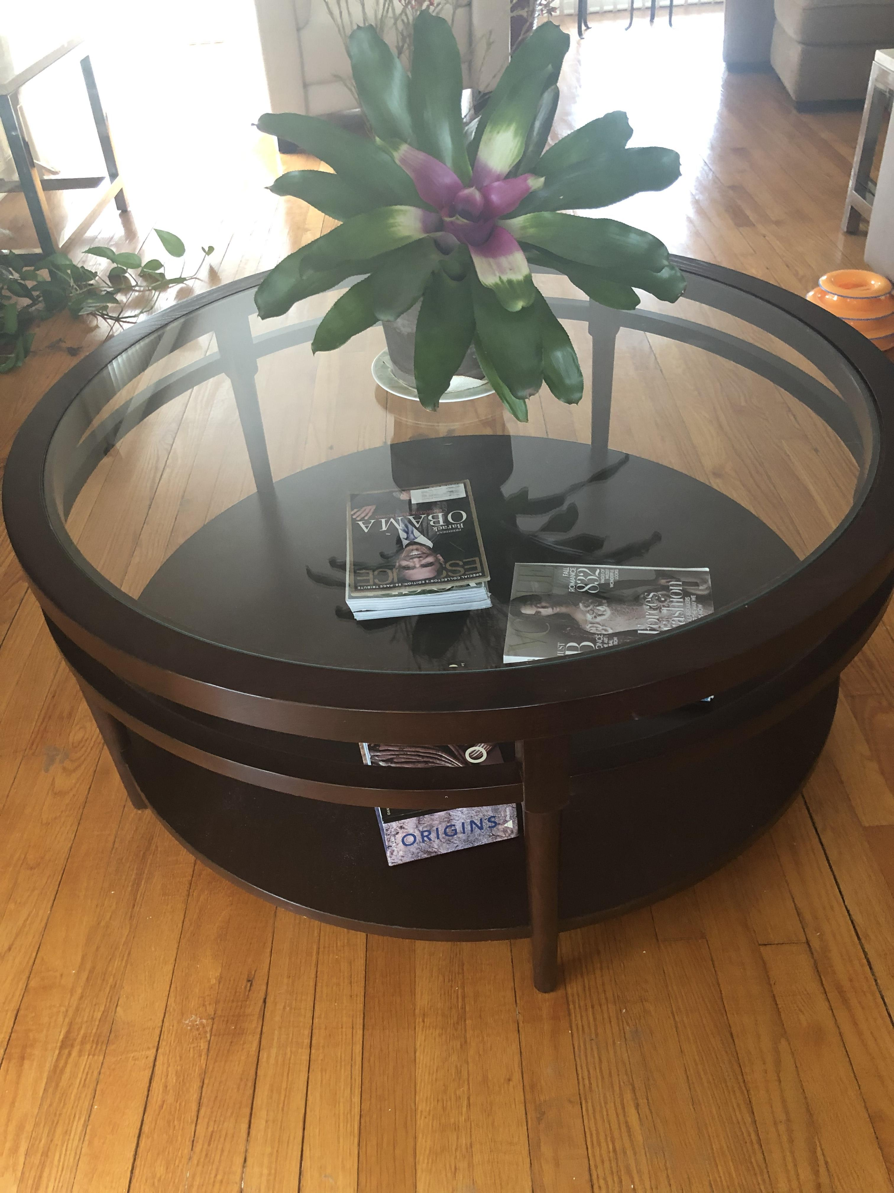 Safavieh Round Glass Top Coffee Table