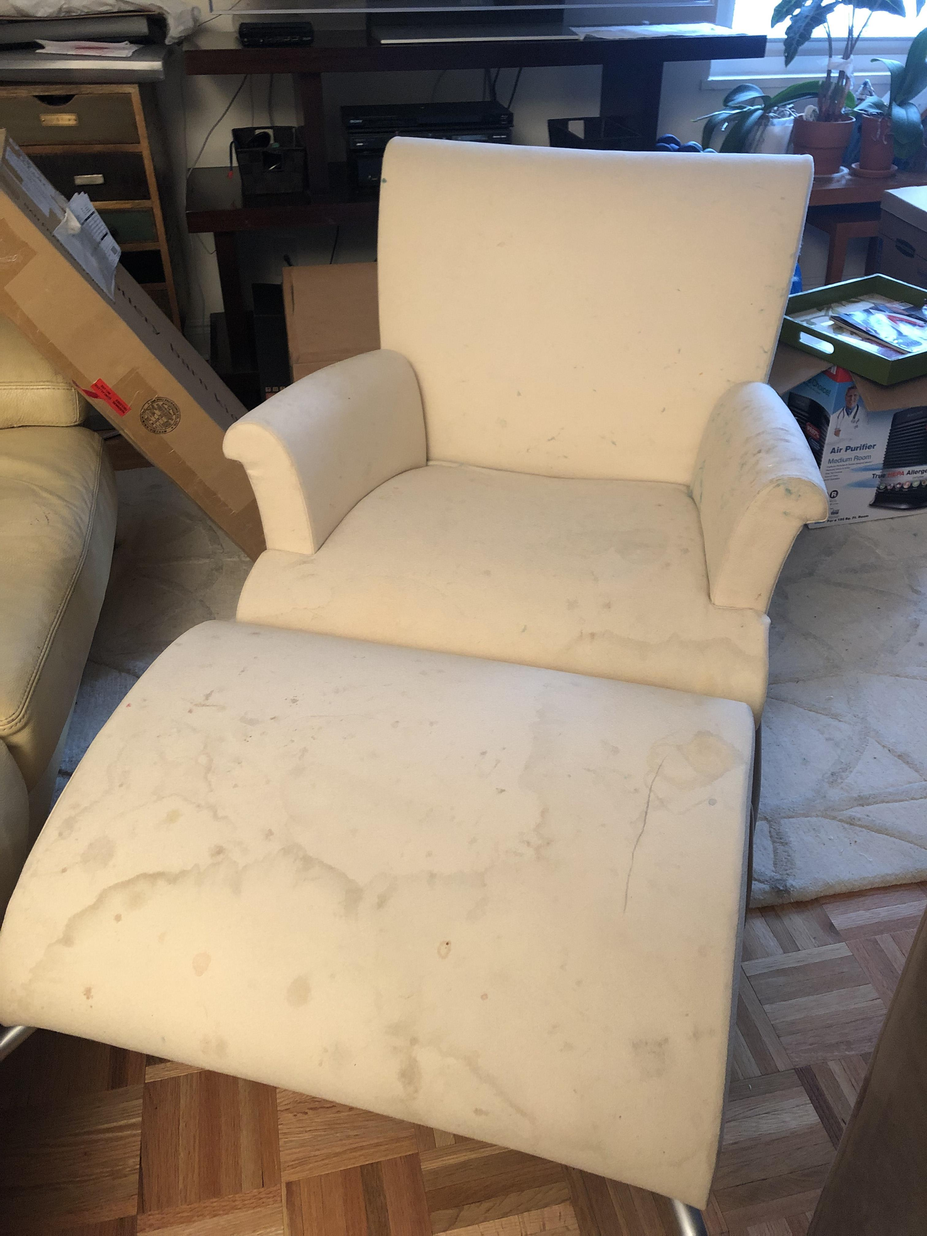 Ligne Roset Lounge Chair