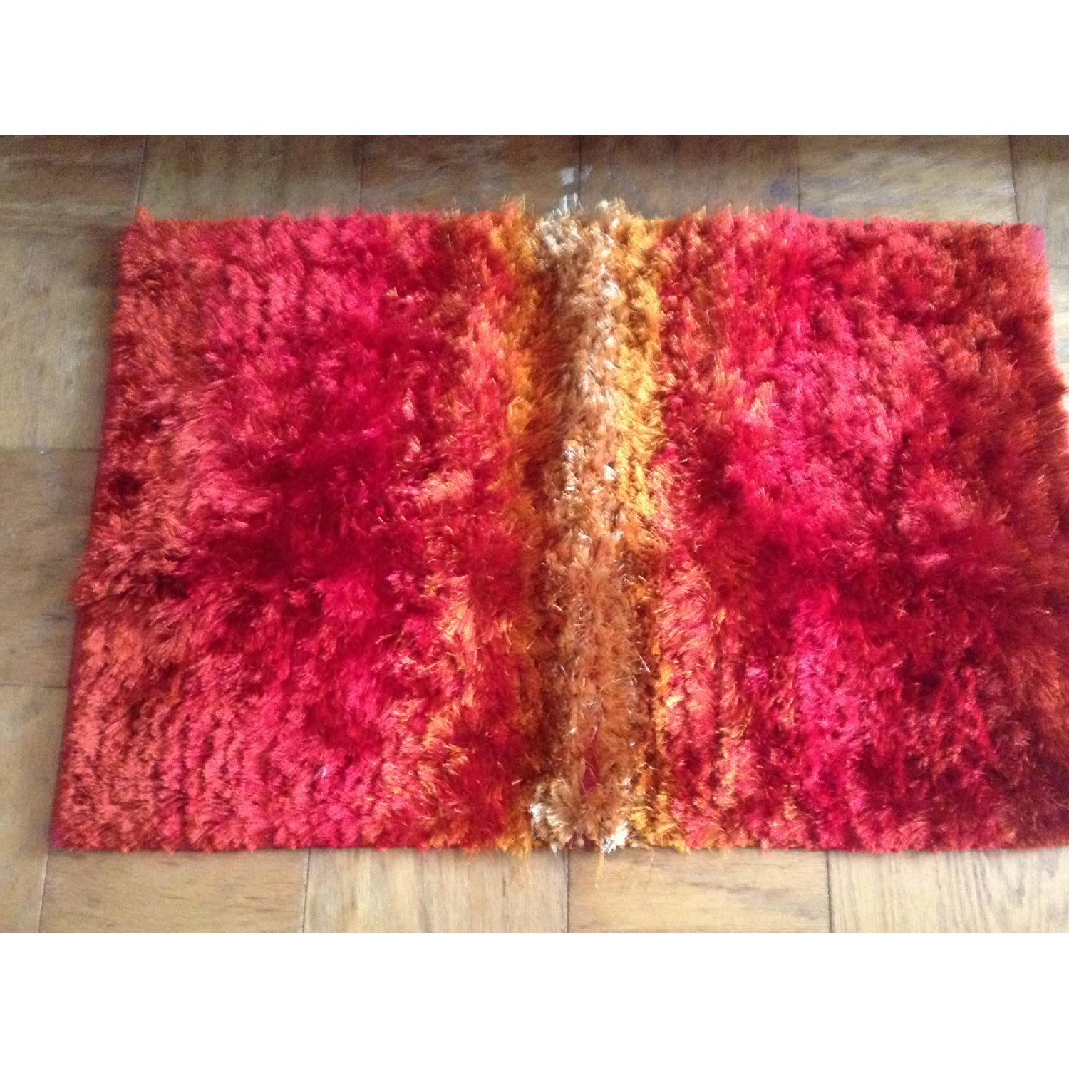 Pier 1 Sumptuous and Luxurious Rug - image-0