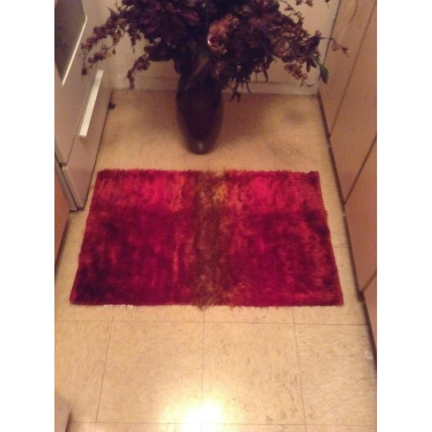 Pier 1 Sumptuous and Luxurious Rug - image-5