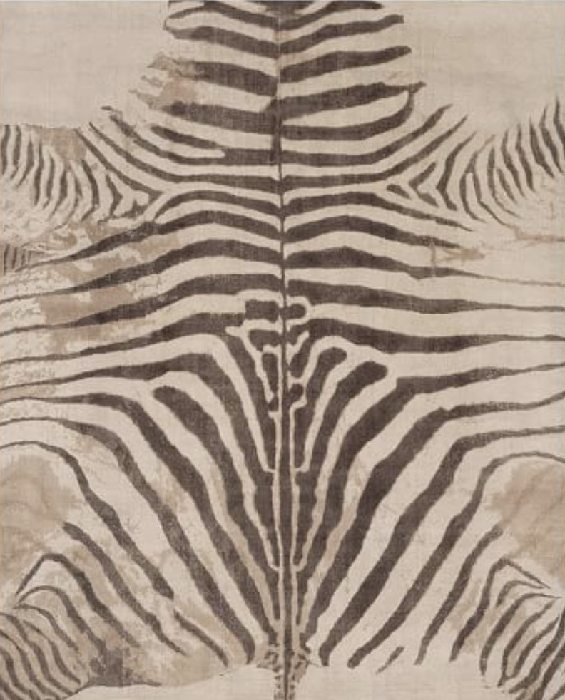 Pottery Barn Wool Zebra Printed Rug