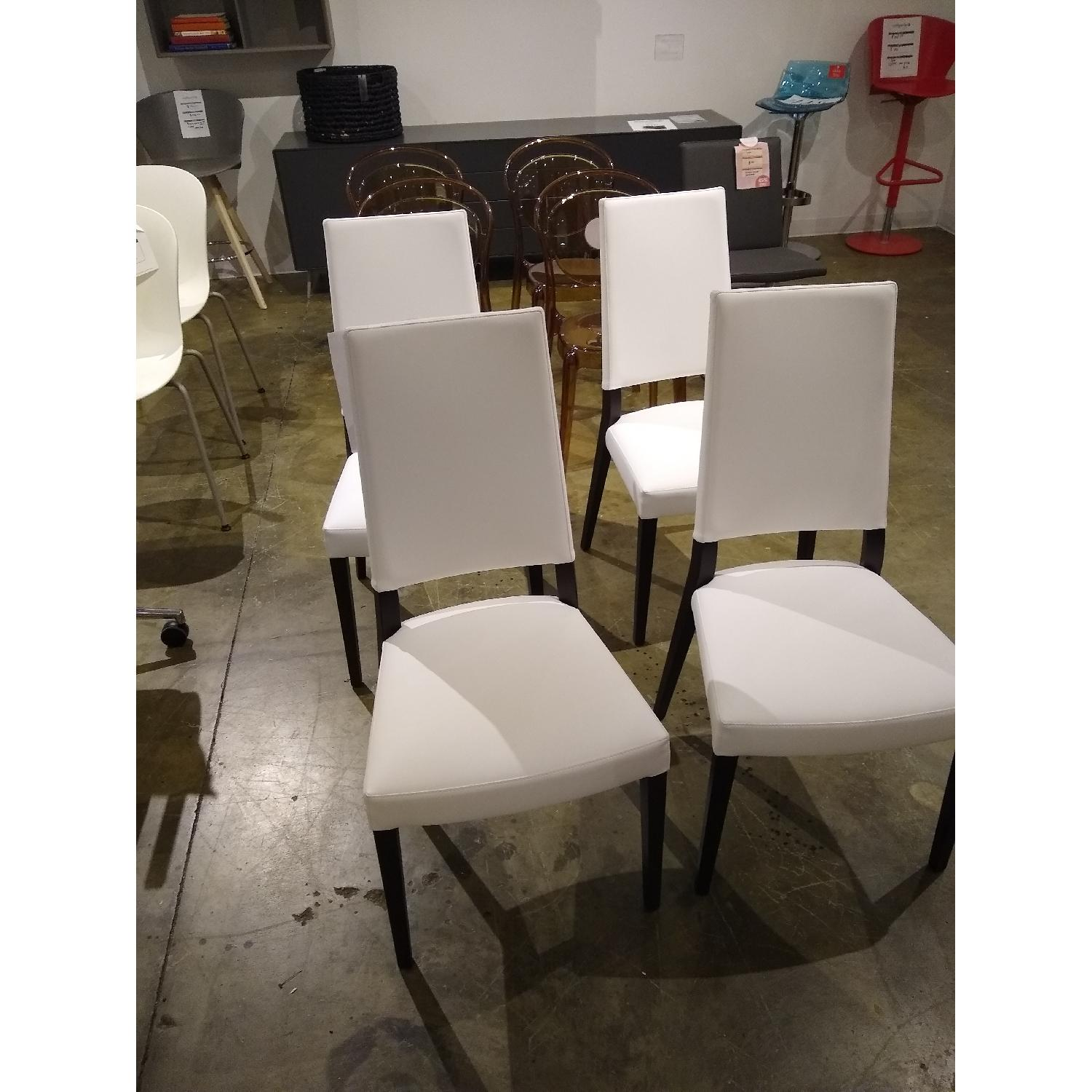 Calligaris Sandy Dining Chairs - image-1